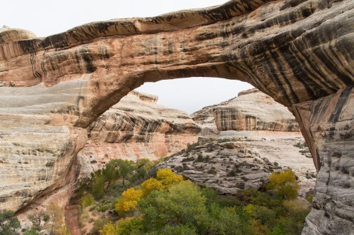Sipapu Bridge. Natural Bridges National Monument