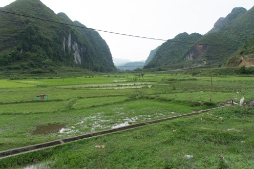 Green fields everywhere en route to Ben Gioc waterfall