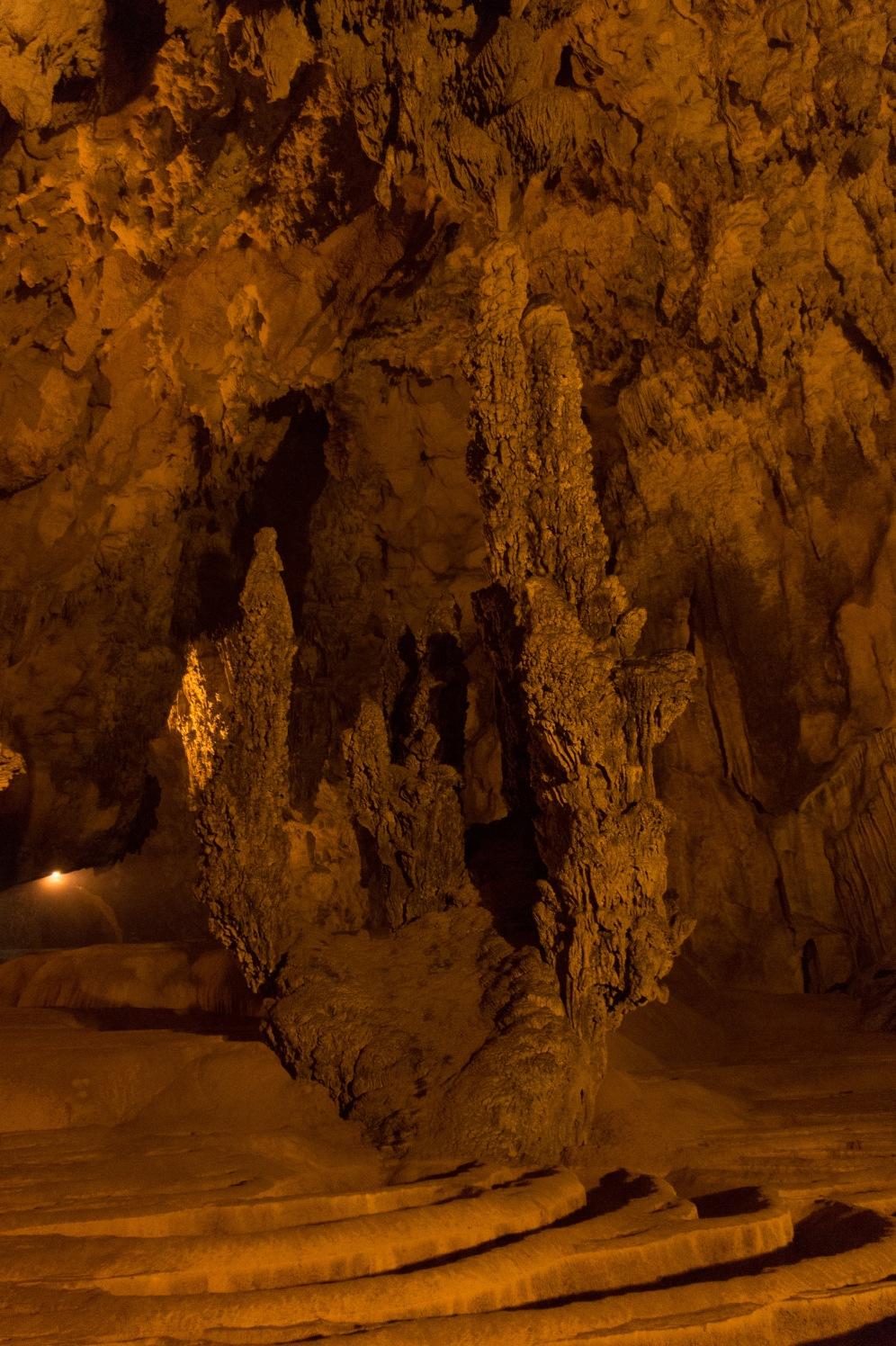 Cave Cactus