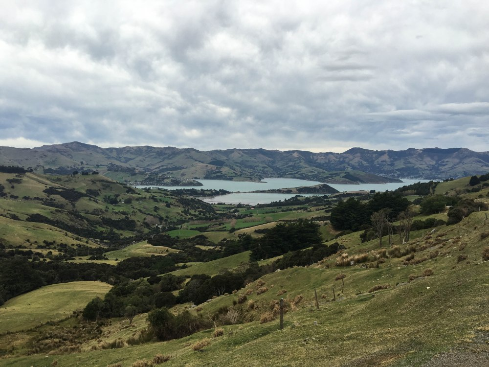 New Zealand-0015