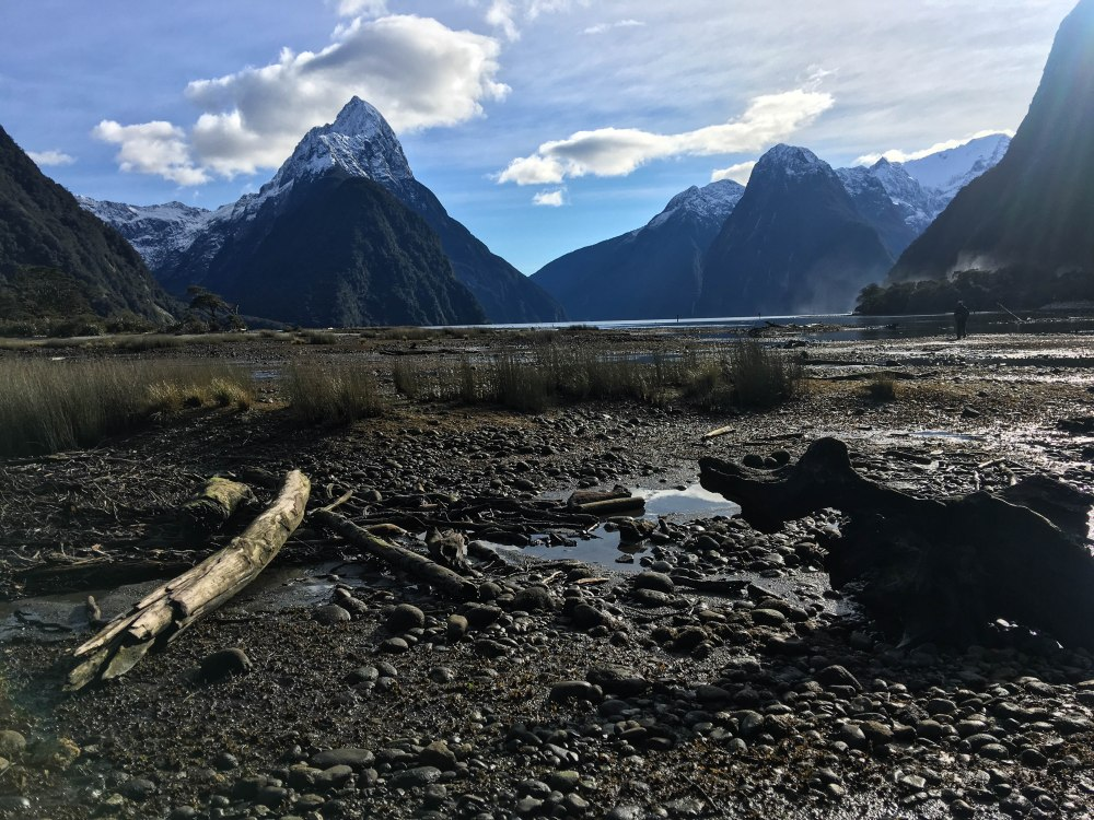 New Zealand-0115